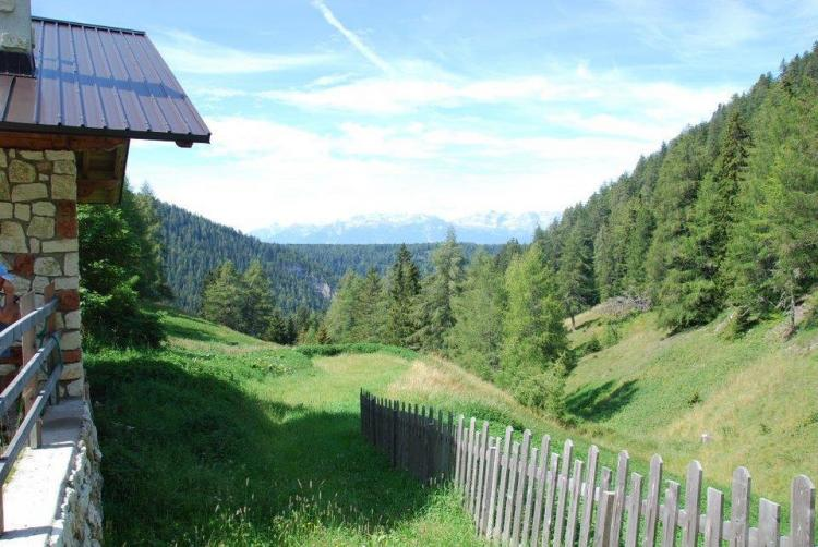 Location Grigliata Settimanale