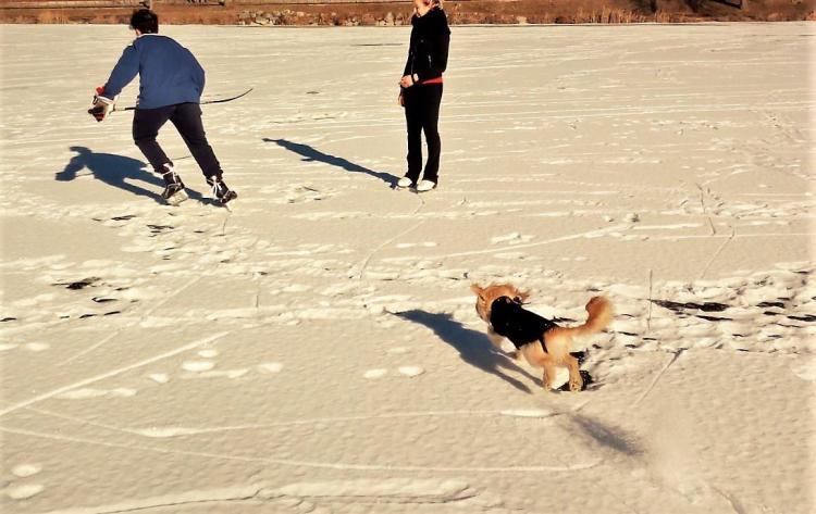 Vacanze con il cane Lago di Canzolino Valsugana
