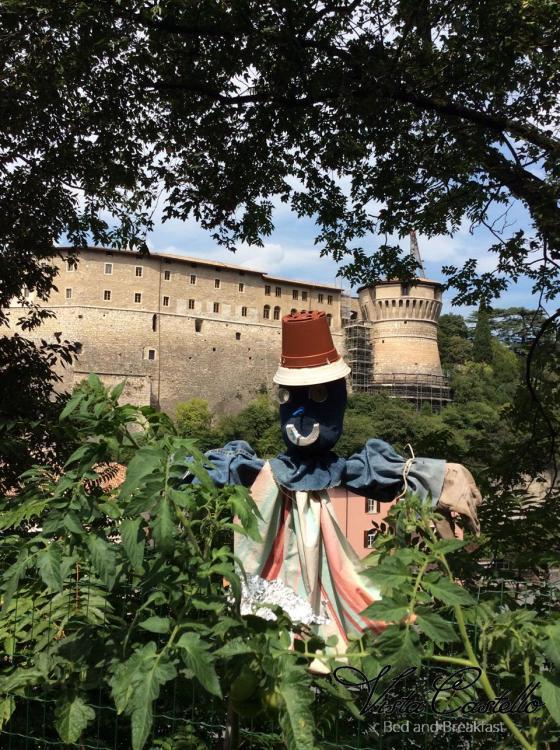 Vista Castello dal giardino