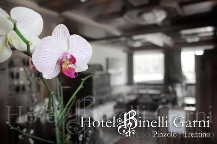 foto Hotel Binelli 018