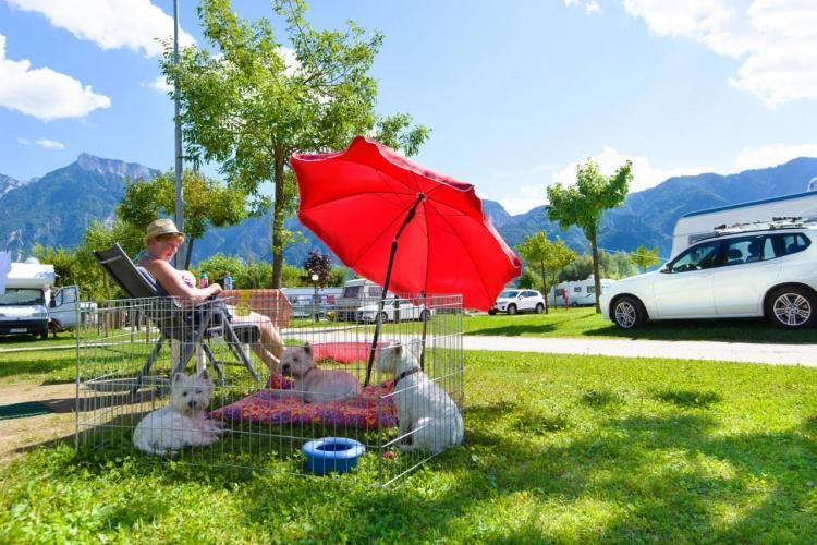 Hunde, Camping Lago di Levico