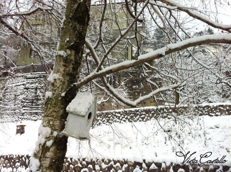 giardino-neve03-vista-castello