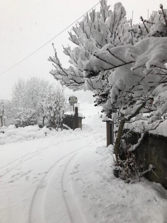 ingresso invernale Gioconda