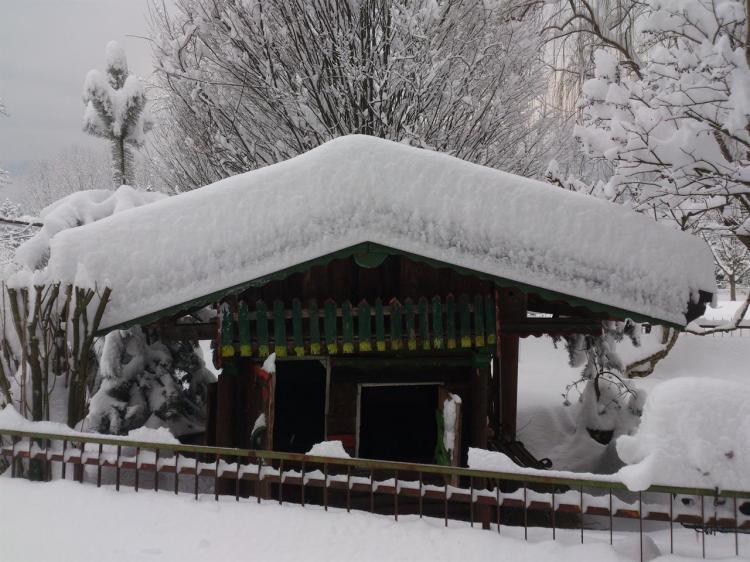 Nevicata 2013